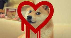 dogeapi-heartbleed