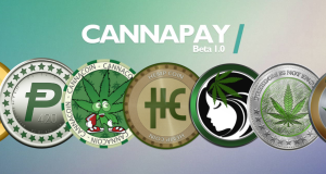 cannapaybanner